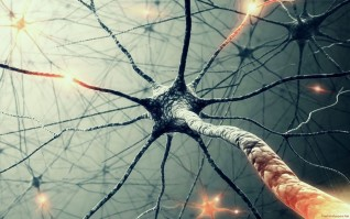 Kurs #3V2018: NeuroKreativitet