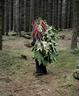 Eyes as Big as Plates # Astrid (2011) av Karoline Hjorth & Riitta Ikonen